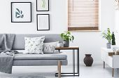 Real Photo Of End Table With Fresh Plant And Tea Cup Standing By Grey Couch With Cushions And Blanke poster