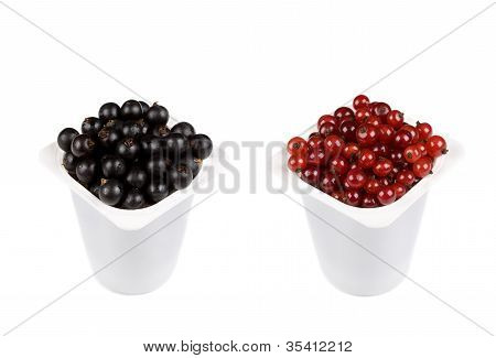 Two Plastic Yogurt Containers With Black And Red Currant Isolated On White
