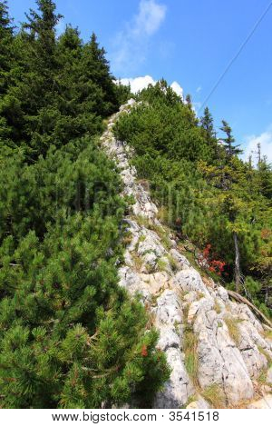 Path To The Mountain Peak