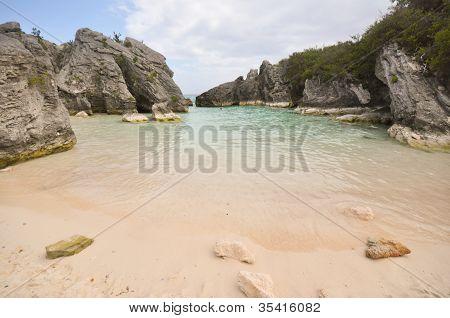 Cove Bermudas de Jobson