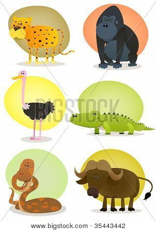 African Wild Animals Set