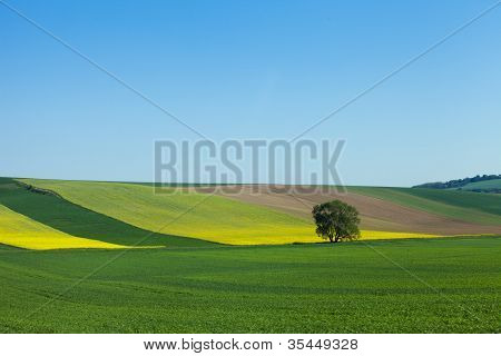 Austria Farmlands