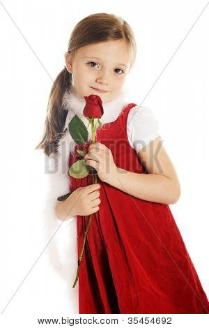 A beautiful elementary girl dressed in red with a white boa, shyly looking at viewer while holding a long stemmed red rosebud.  On a white background.