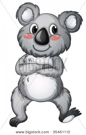 illustration of a koala bear on a white background