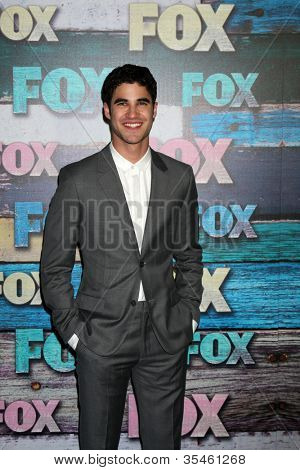 LOS ANGELES - JUL 23:  Darren Criss arrives at the FOX TCA Summer 2012 Party at Soho House on July 23, 2012 in West Hollywood, CA