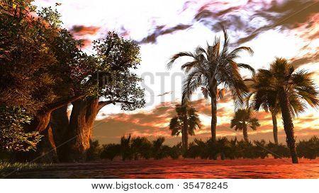 Tropical river