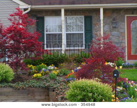 Attractive Landscaping With Bulbs