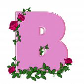stock photo of climbing roses  - The letter B in the alphabet set Blushing Roses is soft pink - JPG