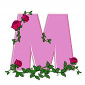 image of climbing roses  - The letter M in the alphabet set Blushing Roses is soft pink - JPG