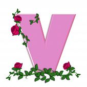 picture of climbing roses  - The letter V in the alphabet set Blushing Roses is soft pink - JPG