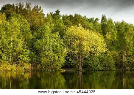 Green Lake At Dusk