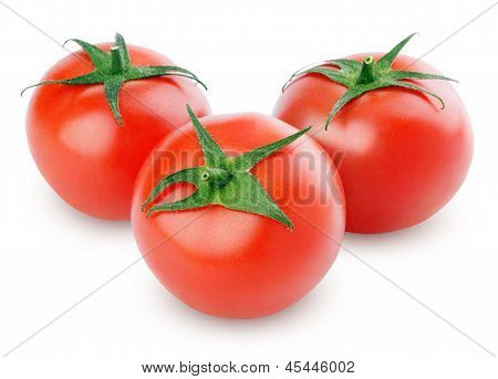 Three Fresh Red Tomatoes On White
