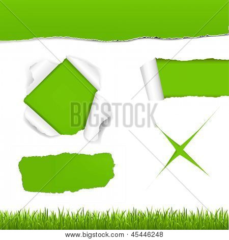 Green Torn Paper Set With Gradient Mesh, Vector Illustration