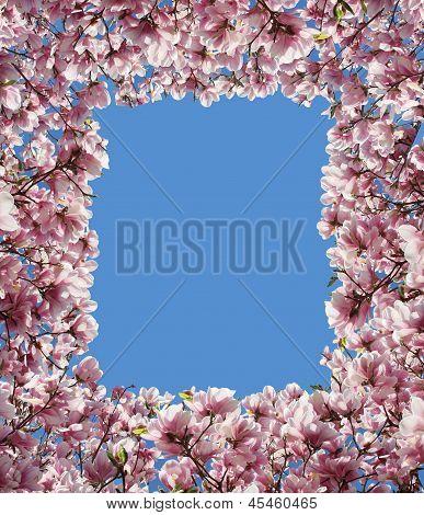 Armação de borda flor de magnólia