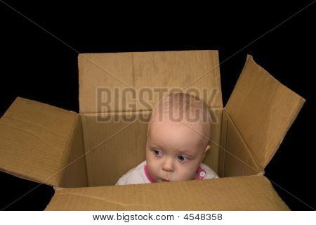 Little Boy Sitting In A Box