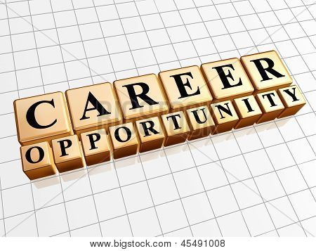 Career Opportunity In Golden Cubes