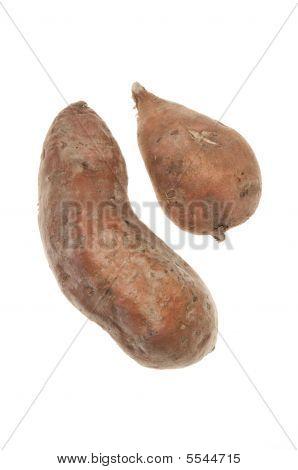Pair Of Sweet Potatos Yams