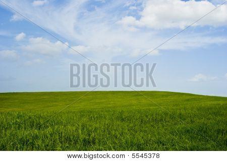 Um campo gramado perfeito