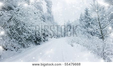 Snow cowered winter road in the mountains