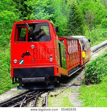 Narrow gauge train.