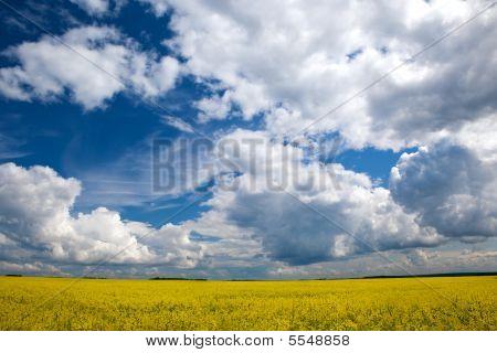 Cloudy Landscape 2
