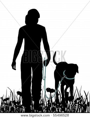 Walking With Dog In The Meadow