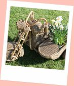 picture of sidecar  - a Wicker Sidecar on the meadow as background - JPG