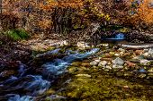 stock photo of guadalupe  - Beautiful Swift Clear Water with Waterfalls and Fall Foliage Surrounding the Guadalupe River Texas - JPG