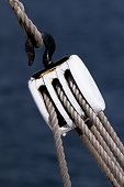 stock photo of pulley  - Sailing rope tension with the fishing pulley - JPG