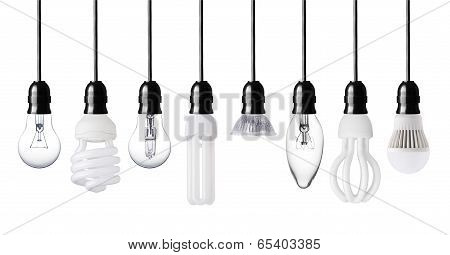 Different Light Bulbs