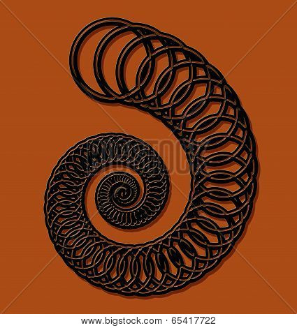 Decorative Ammonite Design