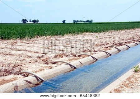 Siphon Tube Irrigation