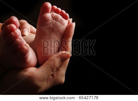 Newborn Little Baby Feet In Mother's Hands