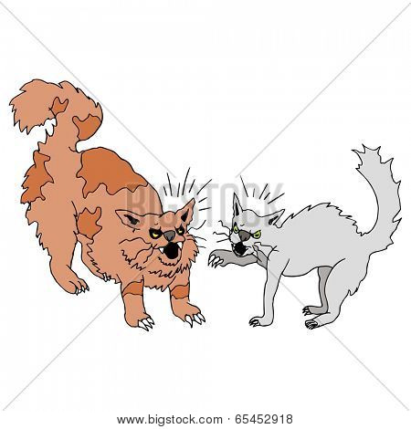 An image of two cats fighting.