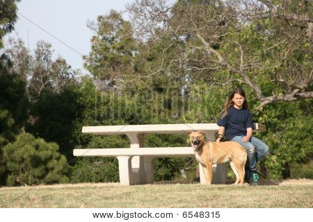 Young Girl And Dog At Park