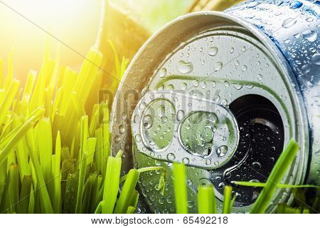 Aluminum Can On A Green Grass