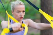 picture of suspension  - Young attractive woman does suspension training with fitness straps outdoors in the nature - JPG