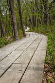 image of starving  - wooden path marking a hiking trail in the starved rock state park in Illinois - JPG