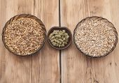 picture of malt  - beer ingredients - JPG
