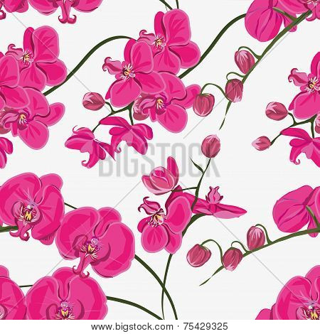Pink orchid seamless pattern