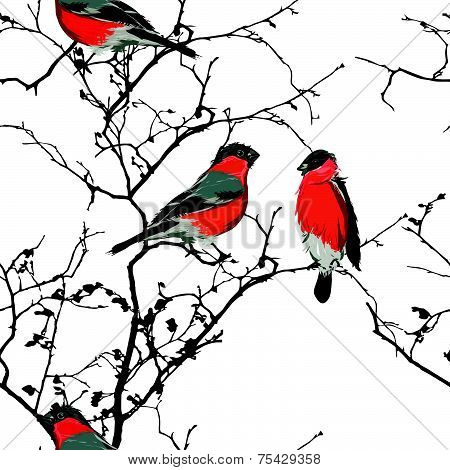 Bullfinches on the branch seamless pattern