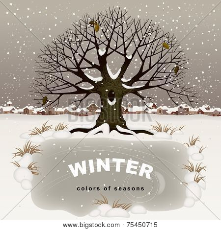 Winter landscape with oak tree, tow in the background, and small frozen pond as banner.  Christmas card. Vector illustration.