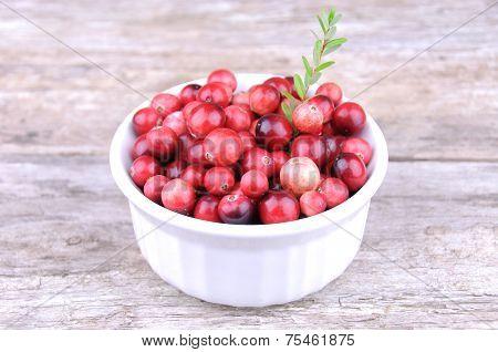 Organice wild cranberries