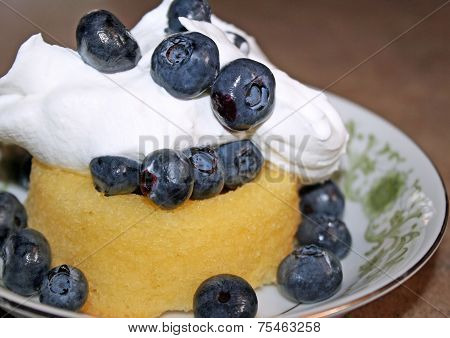 Blueberry Shortcaked With Whipped Cream