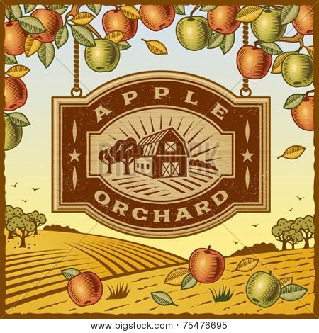 Apple Orchard. Vector