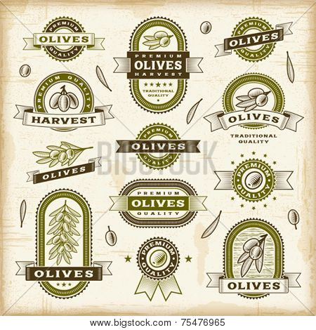 Vintage olive labels set. Vector