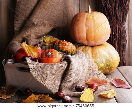 Pumpkins in box on sackcloth on wooden table on wooden wall background