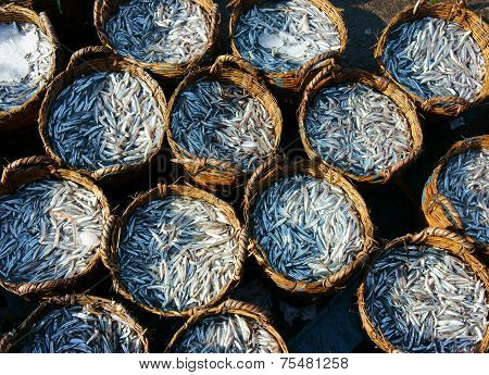 Anchovy Basket, Material For Fish Sauce