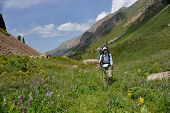 stock photo of hollow  - The backpacker  - JPG