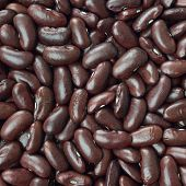 stock photo of zorro  - Black turtle beans texture background or pattern - JPG
